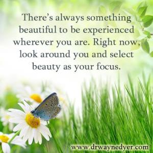 beauty as your focus
